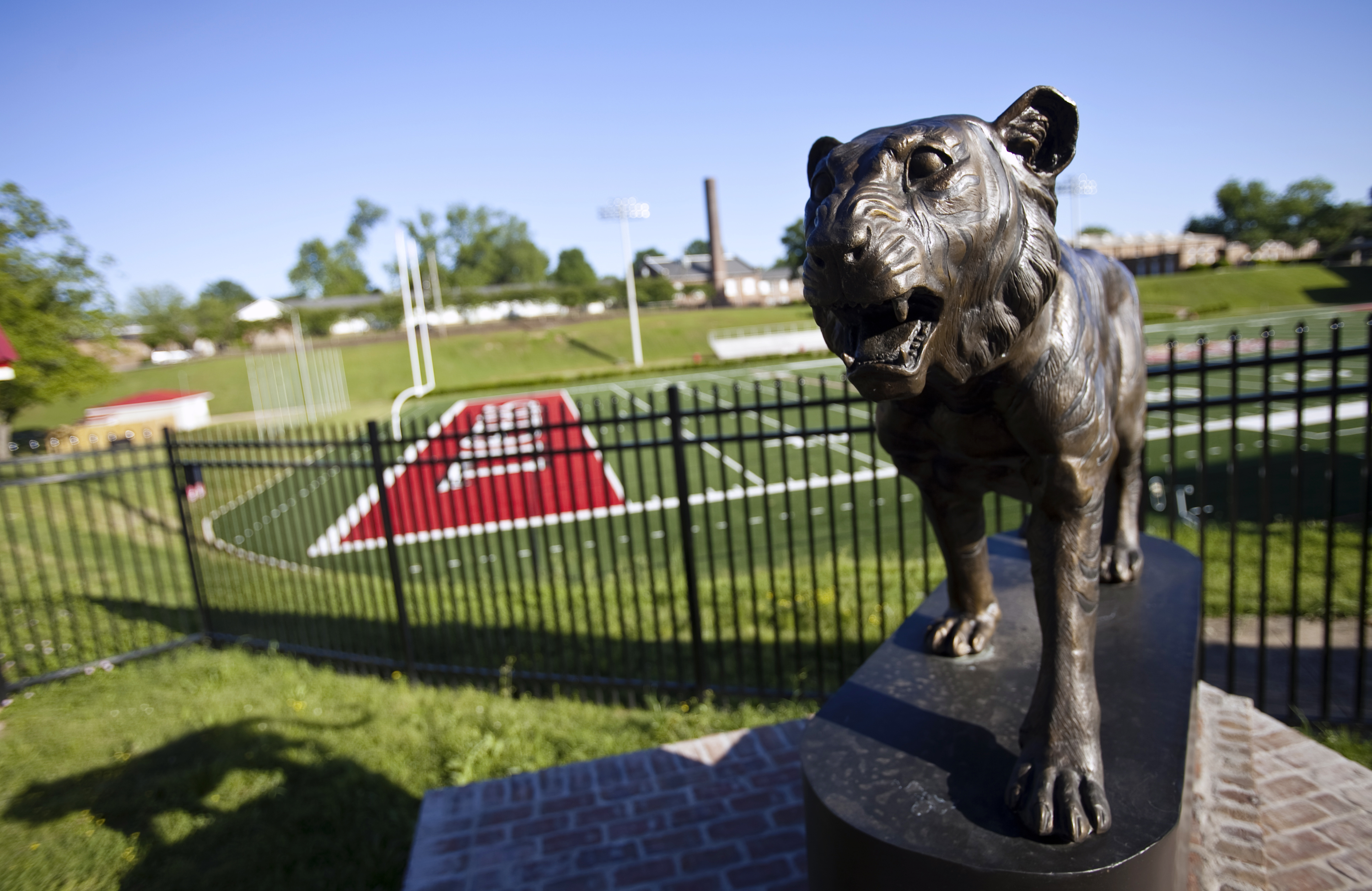 Bronze Tiger statue by football field